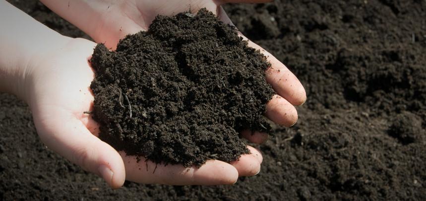 Top Soils & Composts