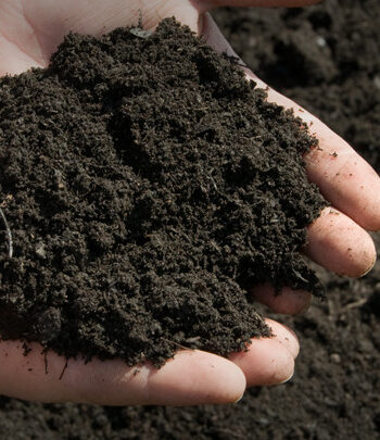 Top Soils & Composts