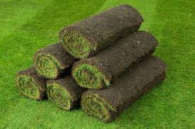 Turf & Artificial Grass