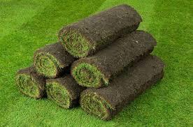 Turf & Artificial Grass